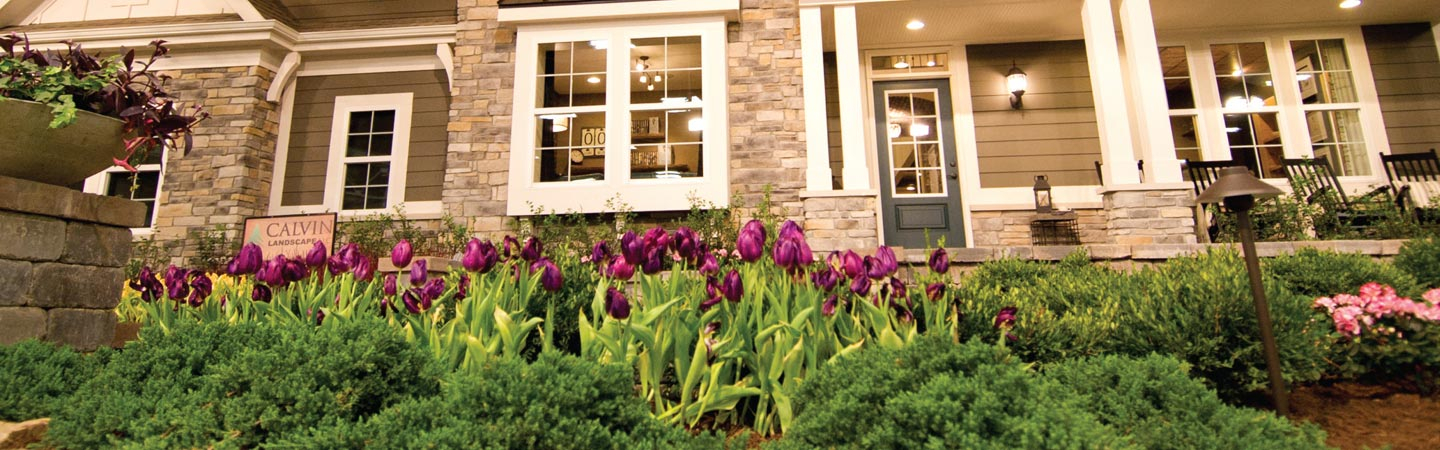 House with purple tulips in front yard